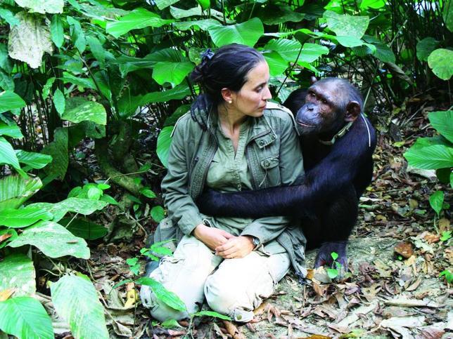 Chimpanzee hugging Rebeca Atencia
