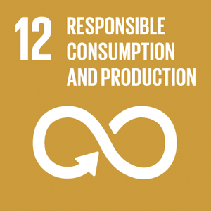 12 – Responsible consumption and production