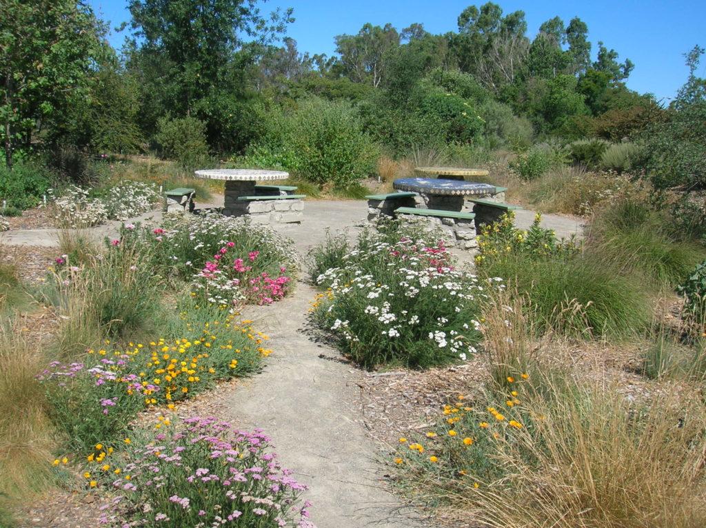 Indigenous garden — Over 25 Votes