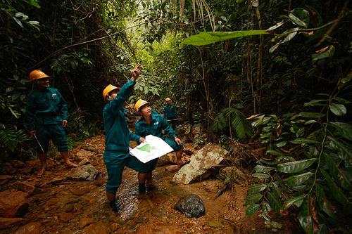 Environmental Workshops — Over 25 Votes