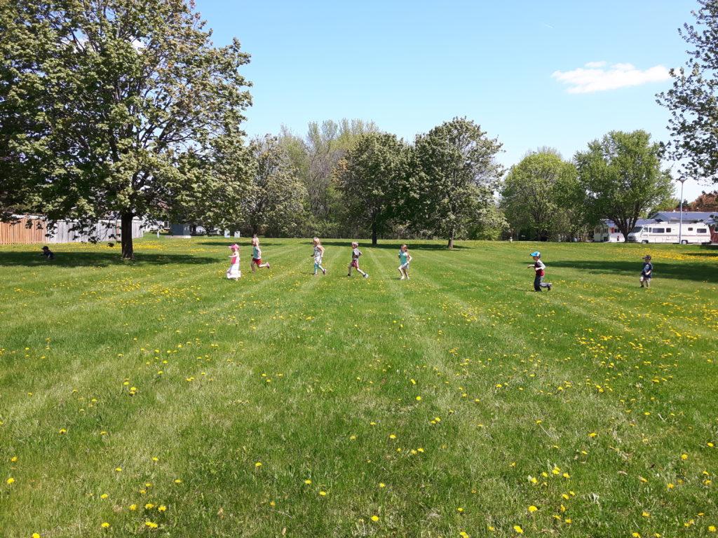 Dana Street Community Garden — Over 500 Votes