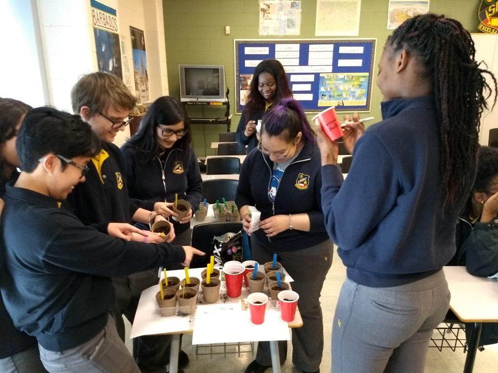 St. Basil's Food Garden — Over 500 Votes
