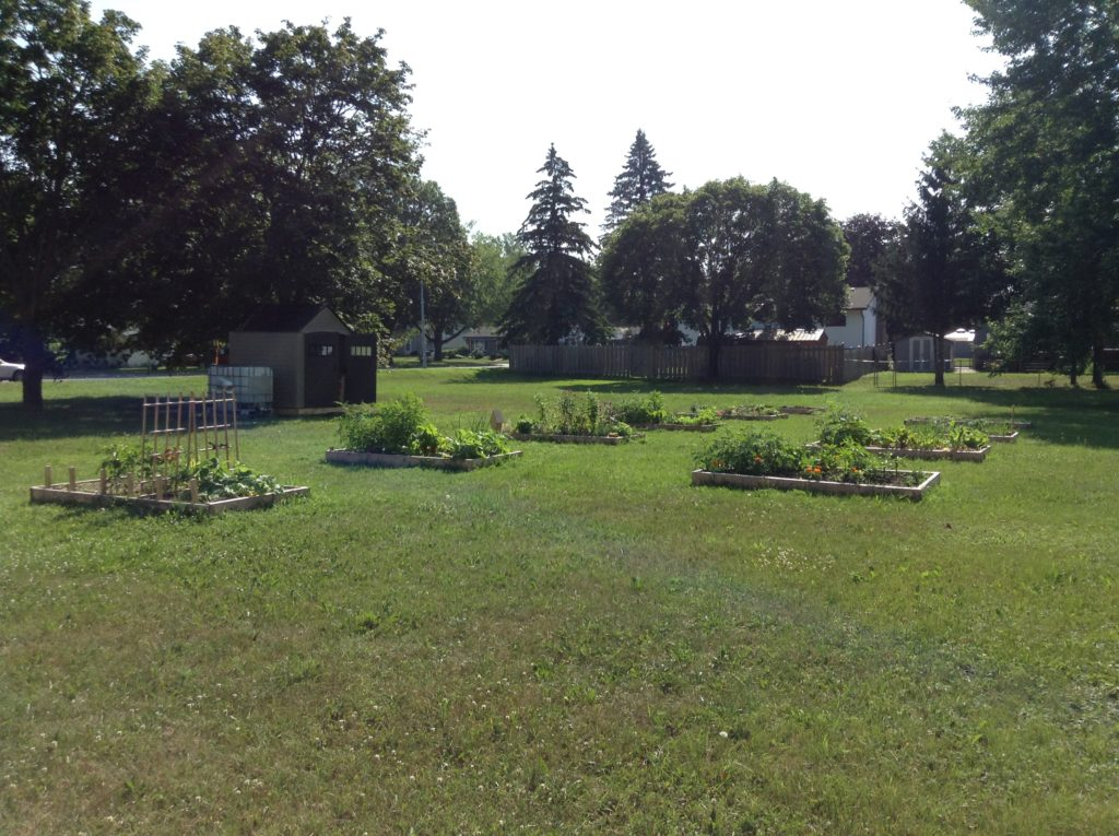 Dana Street Community Garden 2020