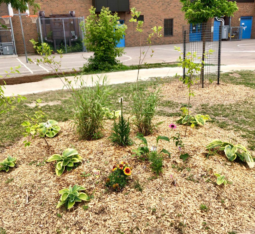 Pollinator Garden Expansion